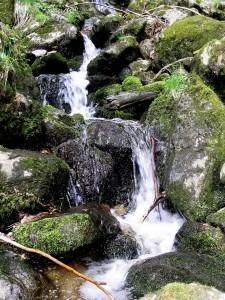 wildromantischer Wasserfall