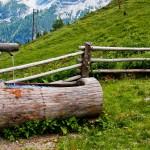 Urlaub in Tirol - © Marianne J.  / pixelio.de